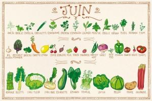 Juin - calendrier des fruits et légumes de saison