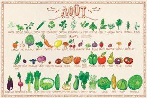 Aout - calendrier des fruits et légumes de saison