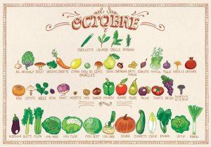 Octobre - calendrier des fruits et légumes de saison